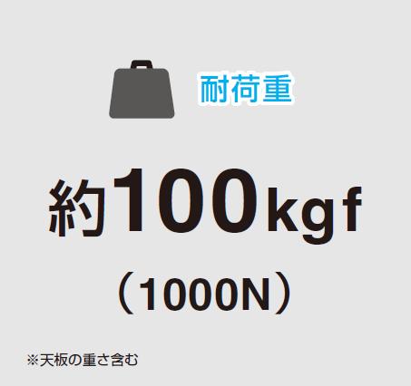 耐荷重,約100kg